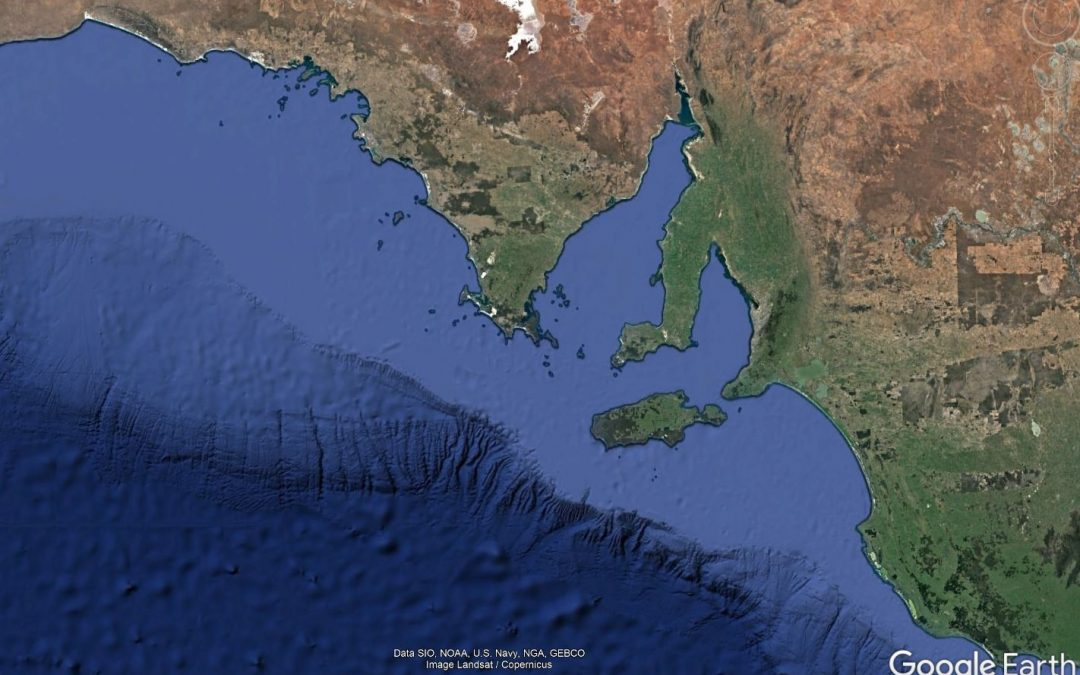 Informing Structural Reform of South Australia's Marine Scalefish Fishery