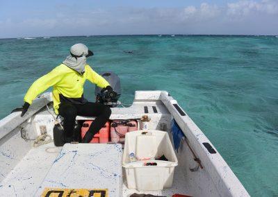 Zone 2 Biomass Survey of Black Teatfish of the Queensland Sea Cucumber Fishery (East Coast)