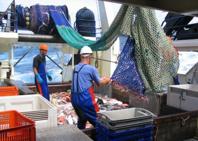 Resource Survey of the Great Australian Bight Trawl Sector