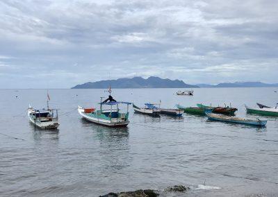 Indonesian fishery training and development