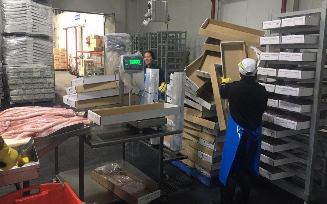 Australian Seafood Traceability WWF Workshop Series